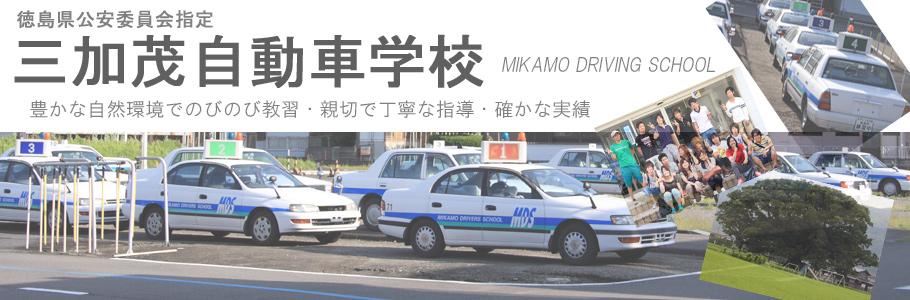 三加茂自動車学校メイン